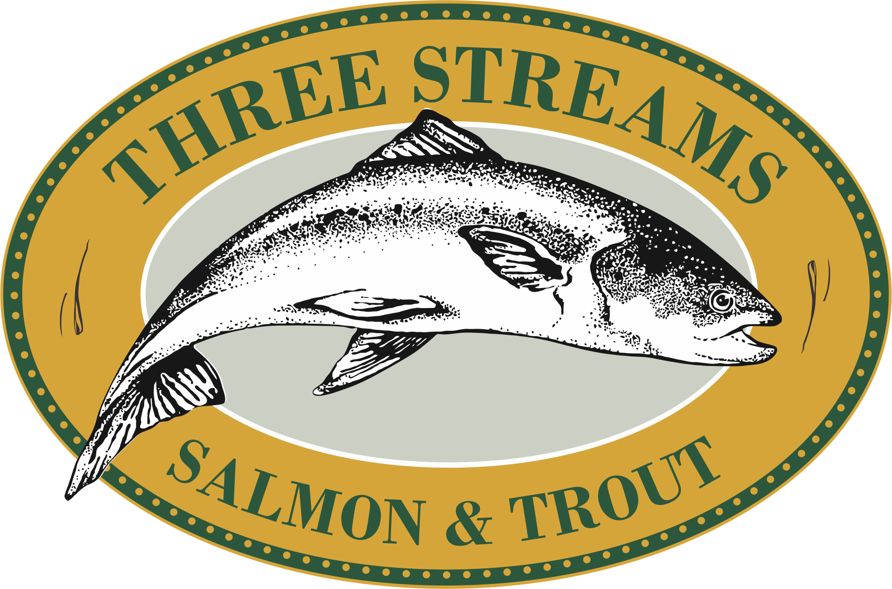 Copy of salmon and trout png